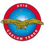 AVIA Associazione di Volontariato in Italia per l'Aviazione